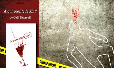 """Dédicace de mon roman """"A qui profite le Kir® ? à Cultura Bourgoin-Jallieu – 21 décembre 2014"""