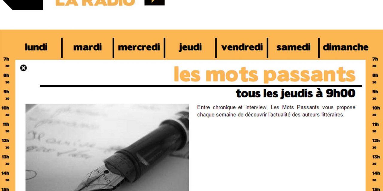"""Interview autour de mon roman """"A qui profite le kir® ?"""" dans l'émission """"les mots passants"""" sur la Radio Dijon Campus"""
